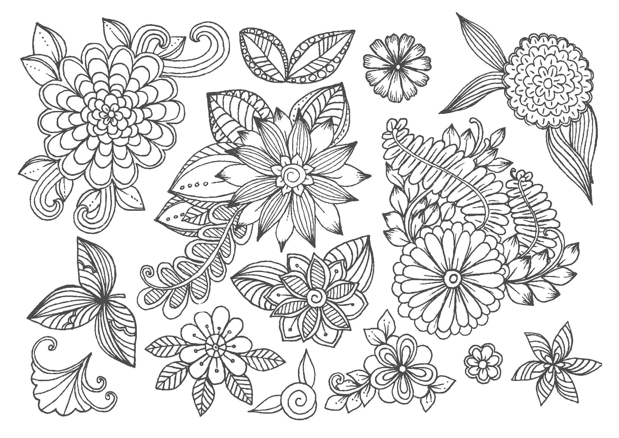 無料の大人の塗り絵今回のイラストは花です5枚追加しましたa4