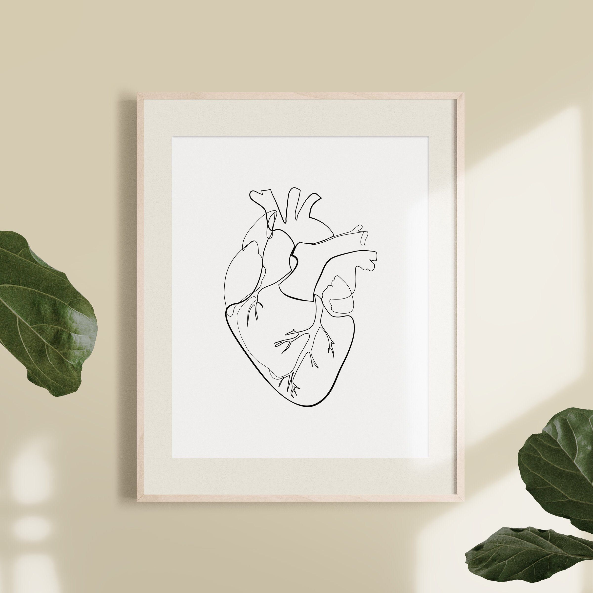 Anatomical Heart Drawing Illustration Abstract Health | Etsy