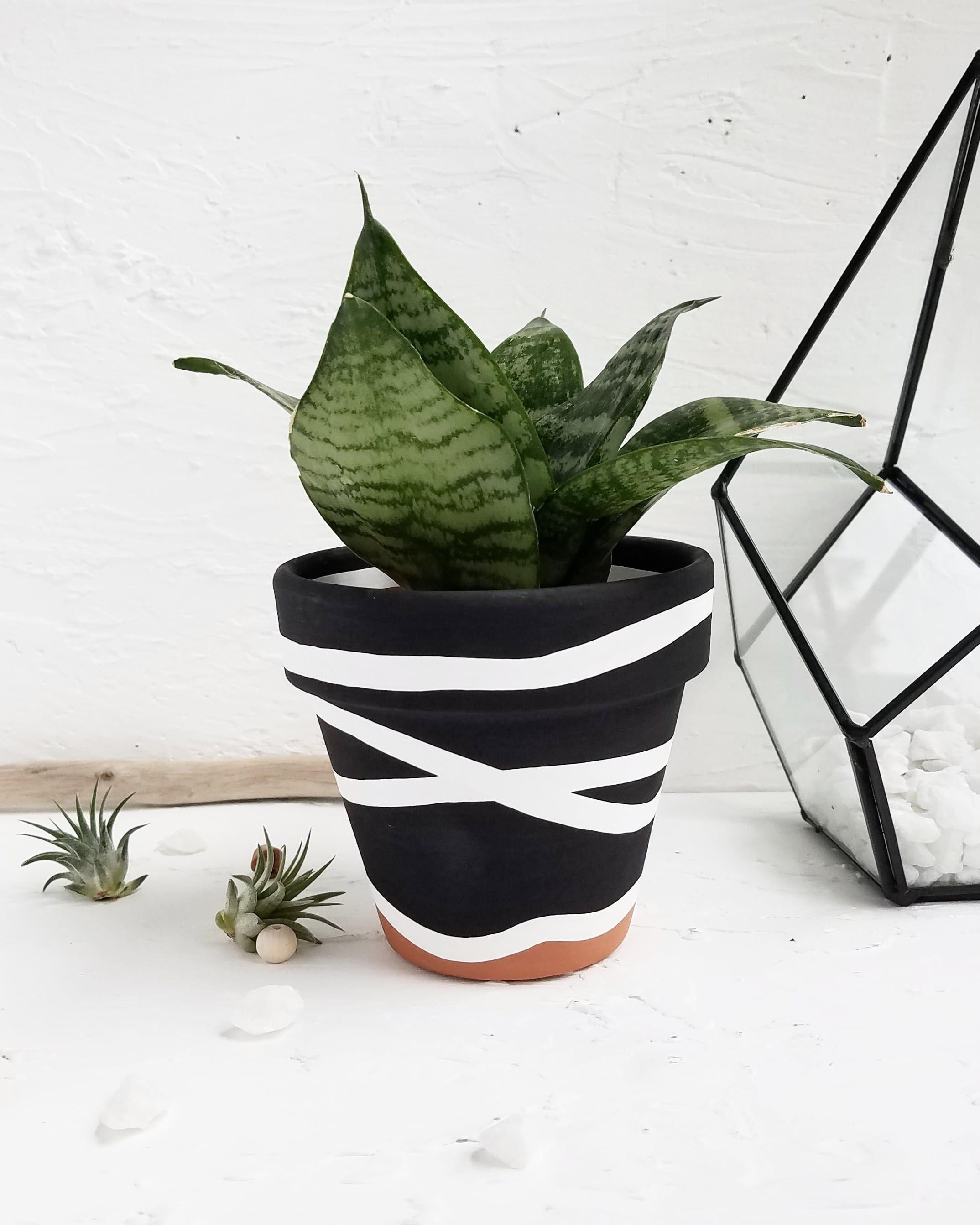 Planter Plantlovers Charitypot Charityplanter Blackandwhite Theinnocenceproject Innocenc In 2020 Painted Plant Pots Painted Terra Cotta Pots Painted Flower Pots