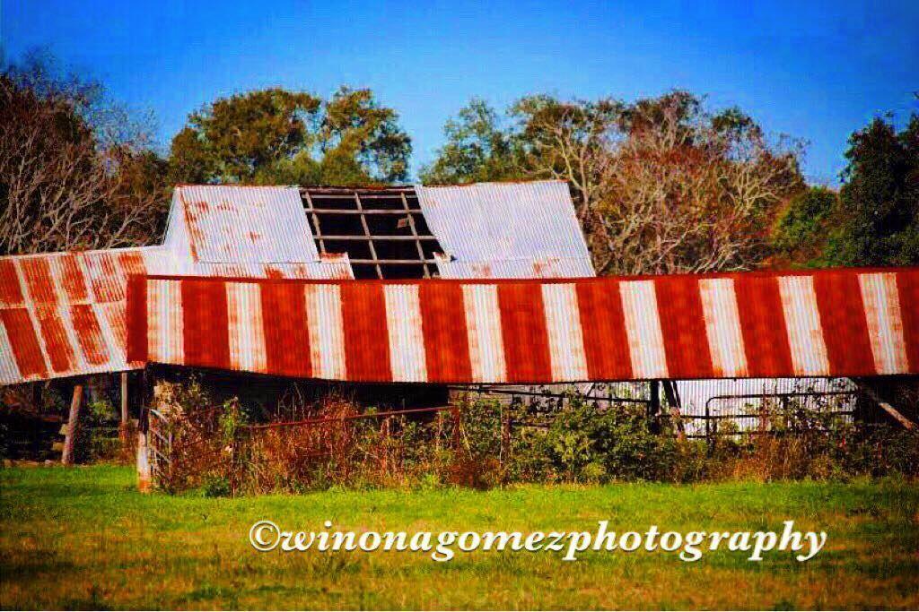 #igtexas #instagramtexas #ig_myshot #texas #texasbarn #barn #texascountryside #countryside #landscape #landscapecaptures #smalltowntexas #visittexas #ig_gtl #goodtexasliving #TXIG #Texas_ig @tour.texas #tourtexas #rural_love #ig_countryside by texasgypsysoull