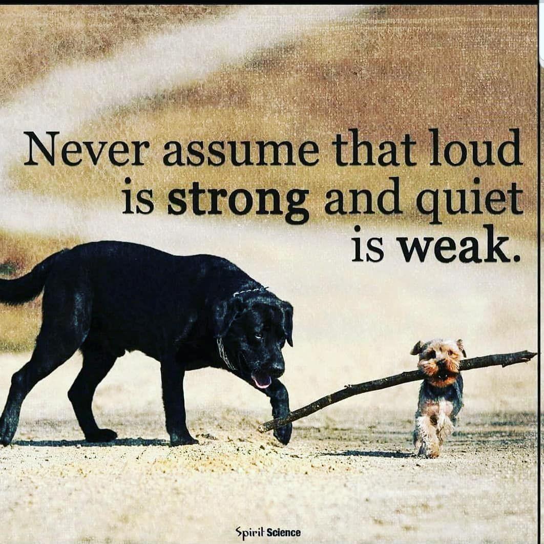 Assume . . #fitness #fitnesslife #fitnessmotivation #fitnessfreaks #workout #gym #fitnessaddict #mot...
