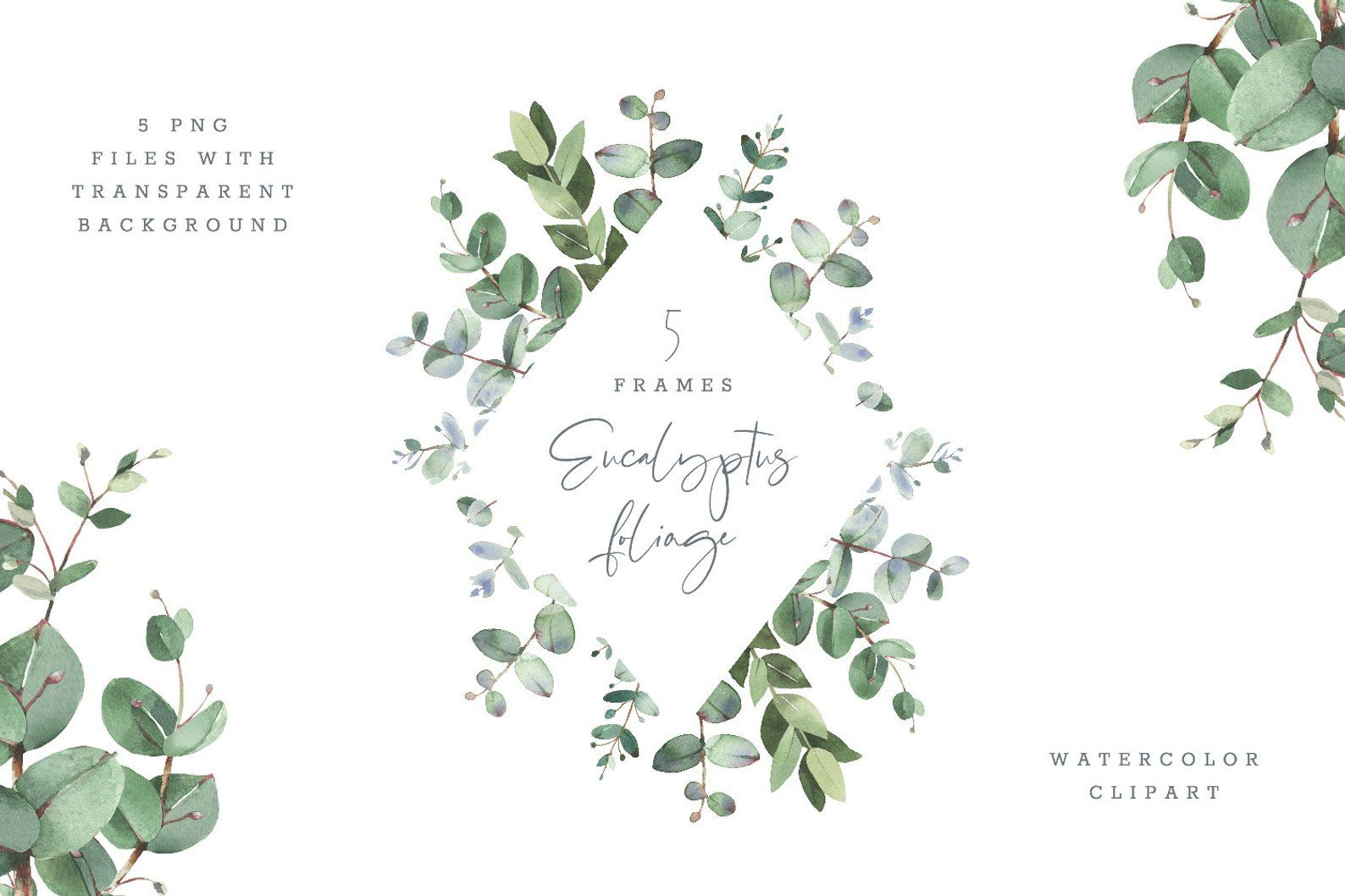 Eucalyptus Foliage Watercolor Clipart With Modern Greenery Etsy