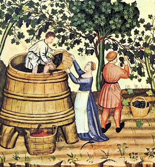 Medieval murals of the wine-making process were popular in Europe