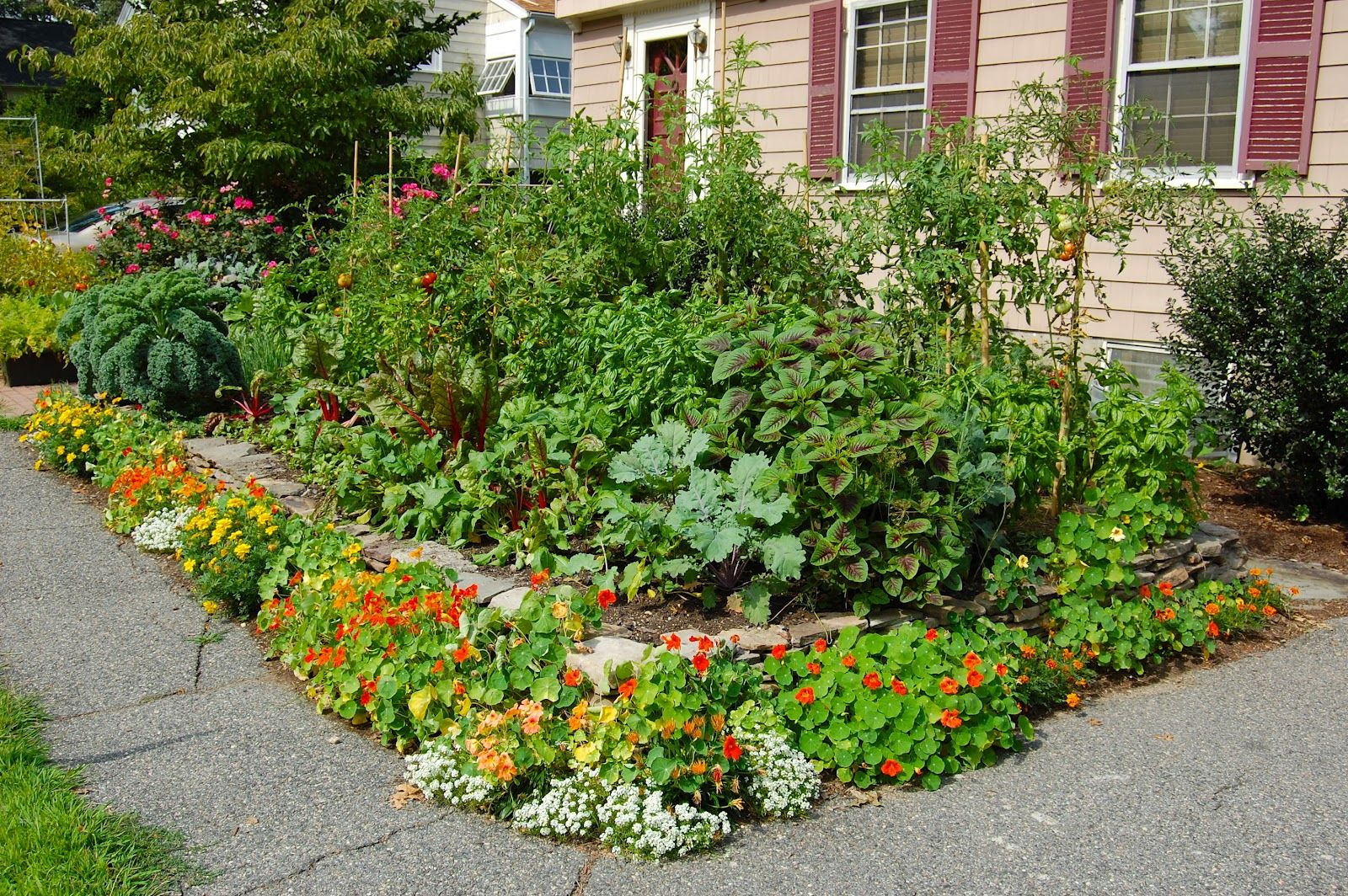 Front yard vegetable garden surrounded by flowers. An ...