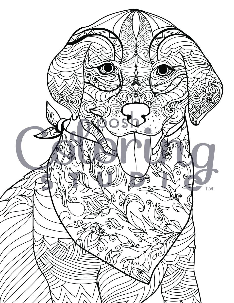 Bandana-Laden Labrador Retriever   Posh Coloring Studio   Coloring ...
