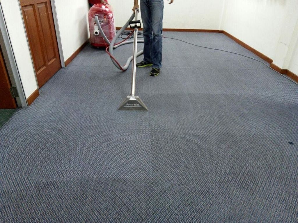 Carpet Cleaning 101 Why You Should Hire Carpet Cleaning