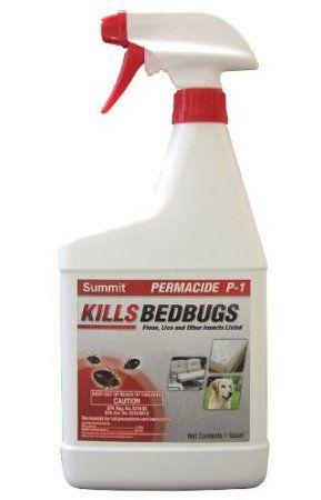 raid bed bug spray and flea killer product review   bed bug spray