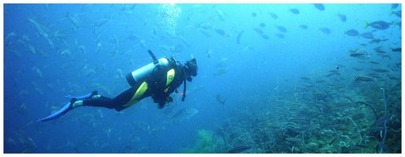 Scuba Diving and Snorkeling in Amorgos, Andros