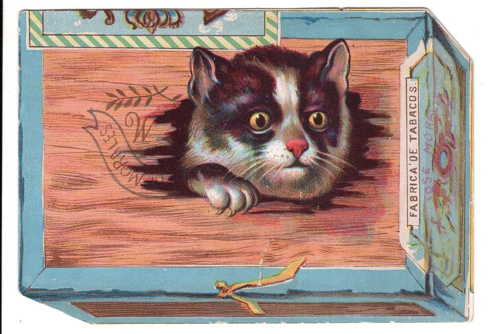 Antique Trade Card Advertising Cigars With Picture Of Cat