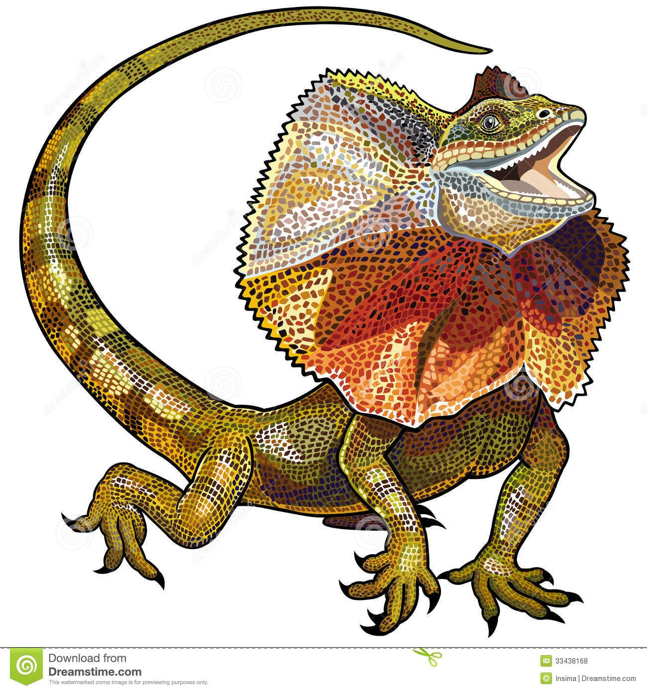 Frill Necked Lizard Google Search Lizard Cartoon Lizard