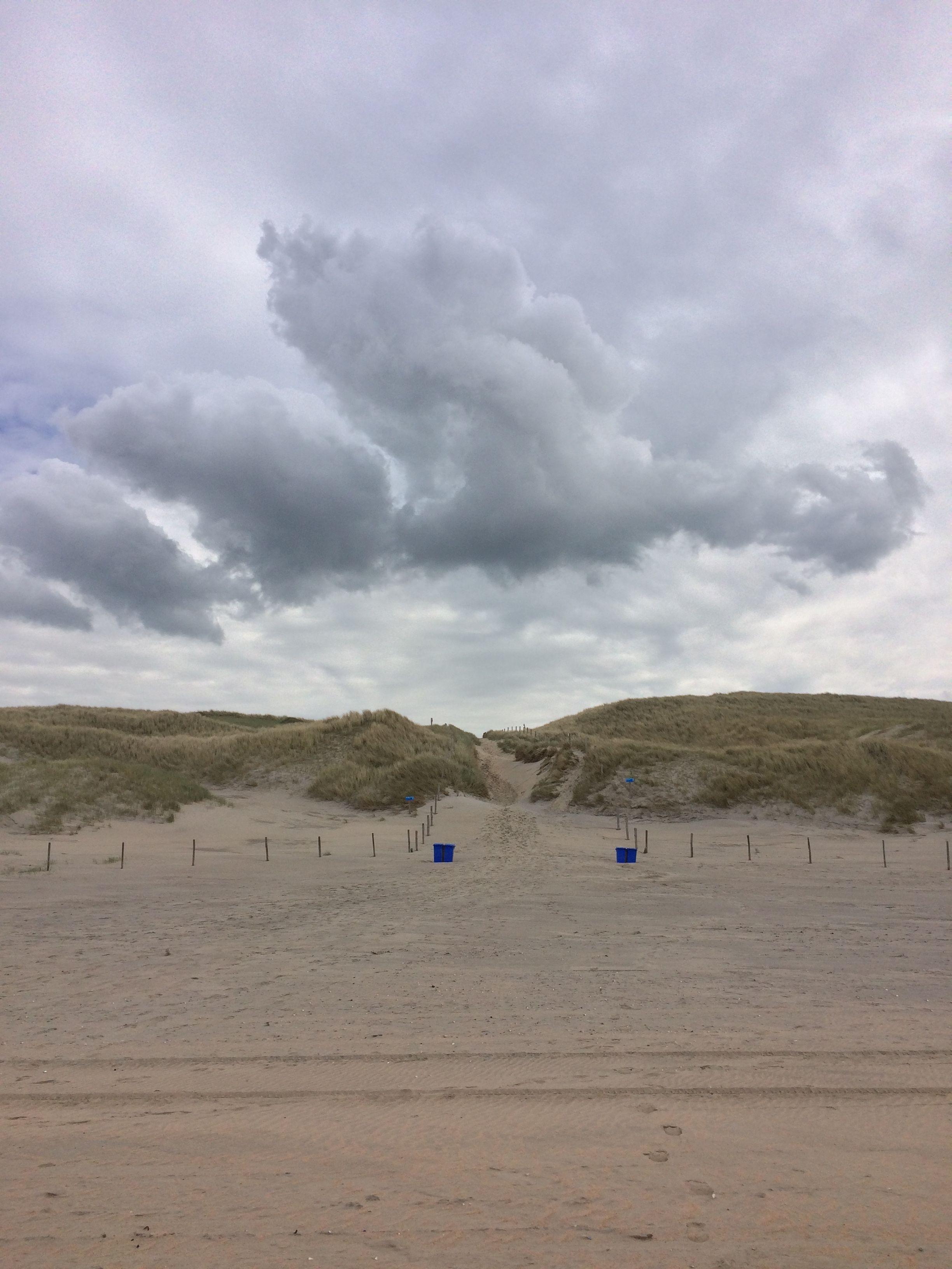 Castricum aan Zee   Strand, Duin