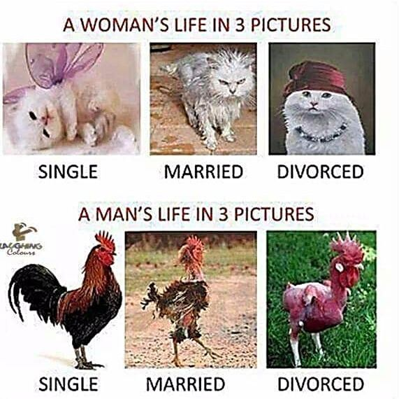Single –vs- Married –vs- Divorced Your Relationship Status
