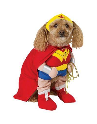 Omg It S Perfect Wonderdog Dog Costume Pet Costumes Party