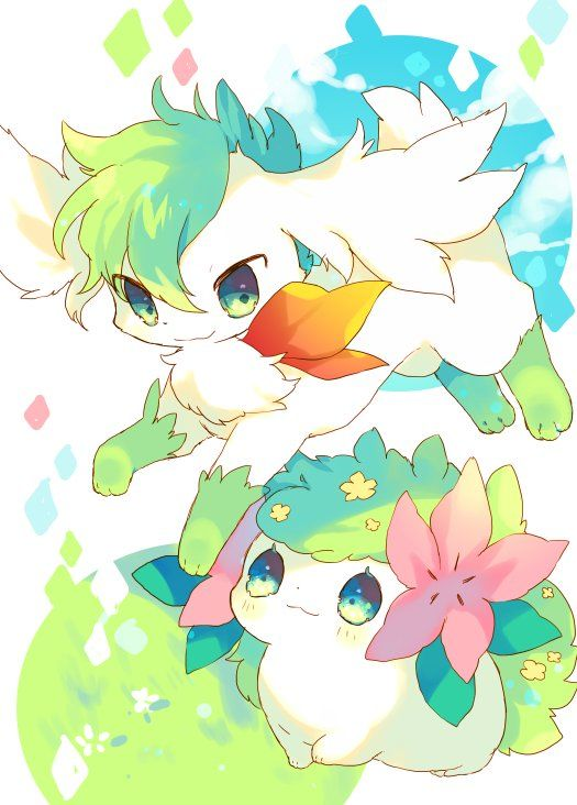 Shaymin Pokémon Kawaii Dessin Pokemon Et Pokemon Personnage
