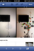 Hide the TV wires