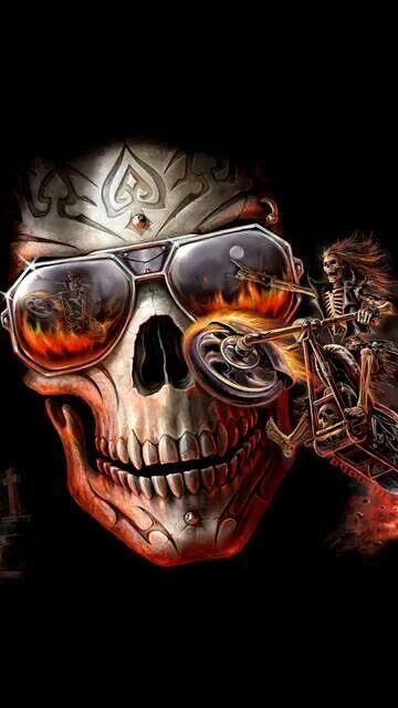 Skull Bilder