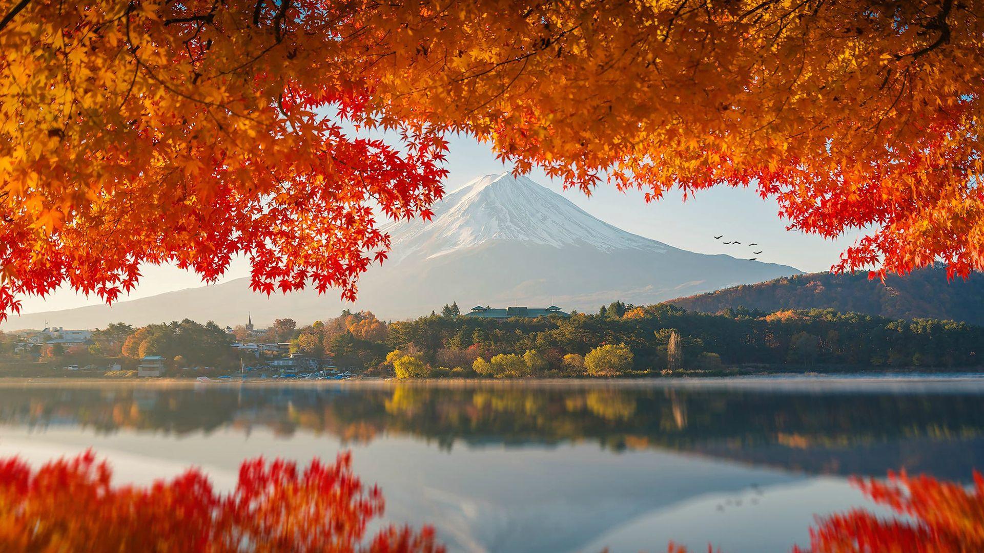Fall Japan Mount Fuji Autumn Wallpaper Berg Fotografie Natur Japan