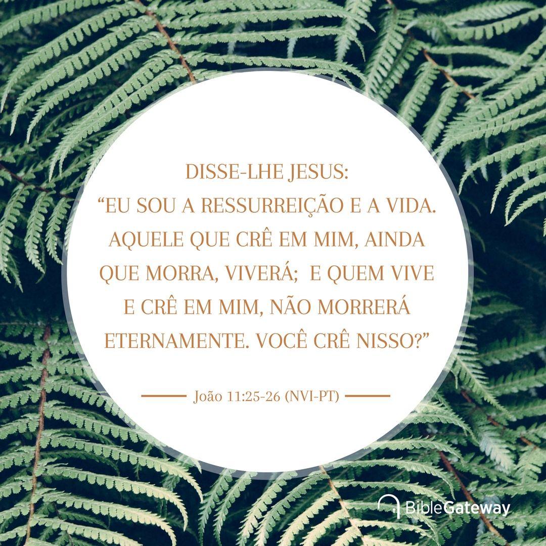 Joao 11 25 26 Nvi Pt Com Imagens Biblia Em Portugues Vida
