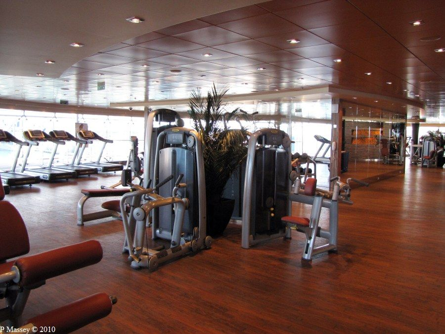 msc splendida fitnes - Google zoeken | Gym, Search, Sports