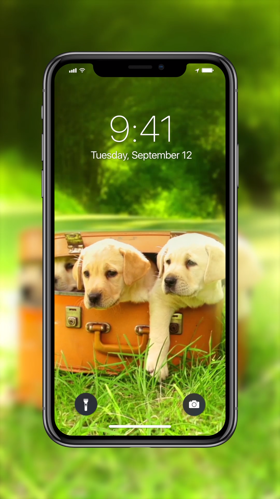 Incredible Live Wallpapers For Your Iphone Live
