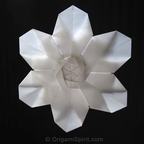 Origami flowers come in many different shapes and forms. When I saw this origami flower, I fell in love with it and immediately wished I could make it. Take a piece of paper and make it right away…I'm sure you will love it too! This flower, designed by David Martinez, is made with an hexagonal […]