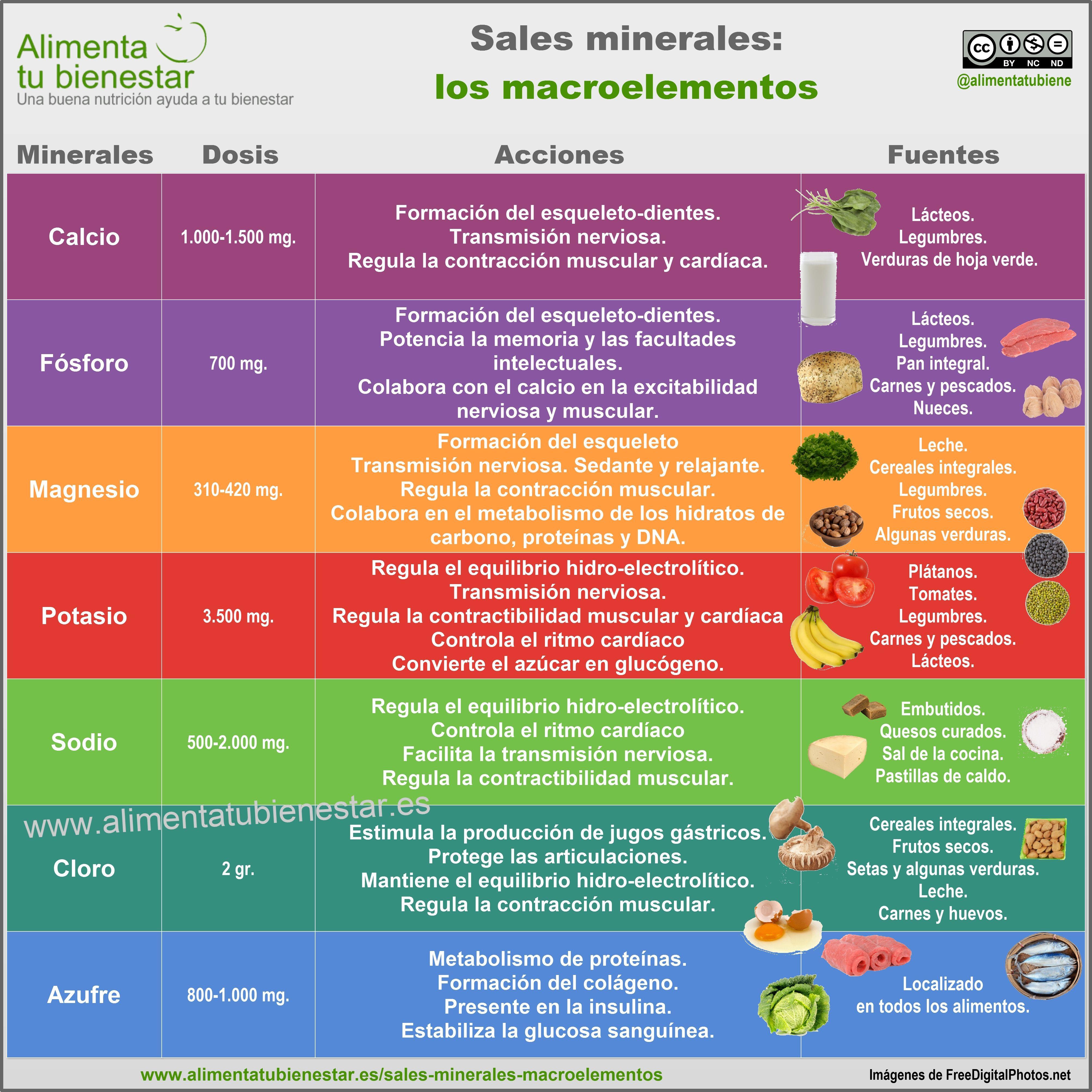 Vitaminas y que cumplen minerales sales las funcion