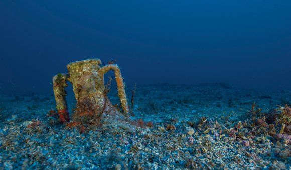 Scientists search the wine-dark sea for the remains of a ship that sank 2,000 years ago—carrying what is believed to be the world's first computer