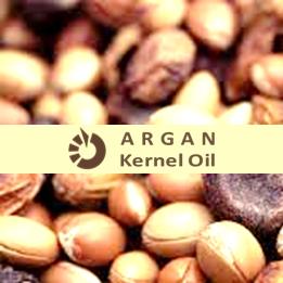 Ingredient Radar Argan Argania Spinosa Kernel Oil Skincareingredient Emollient Antioxidant Agelessskin Skincare Ingredients Oils Emollient