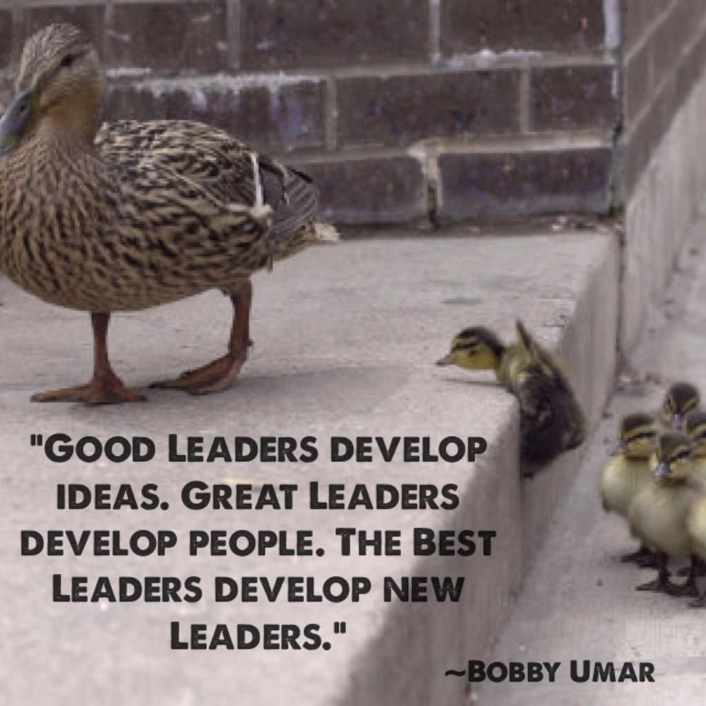 Hey @macdarling TY for asking Here is the image I use for my #leadership #quote. You can use a new image. Plz ref.