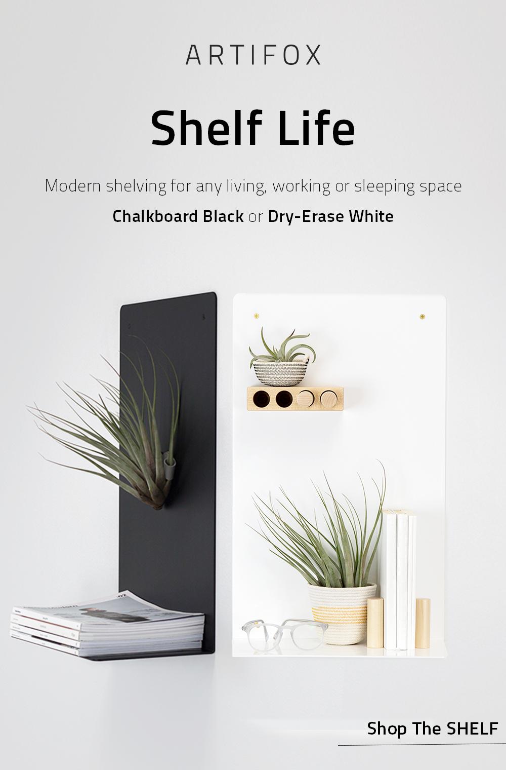 Shelf in created by ads bulk editor