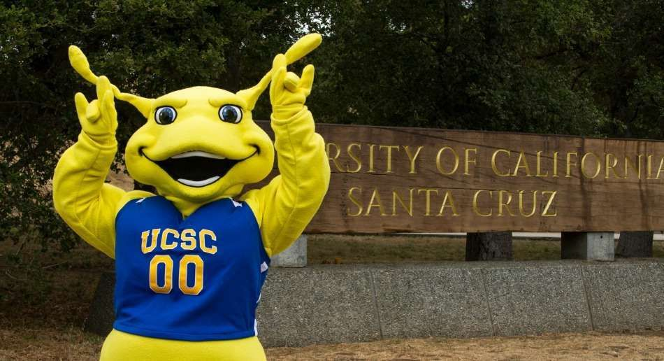 university of california sammy the banana slug these 30 bizarre