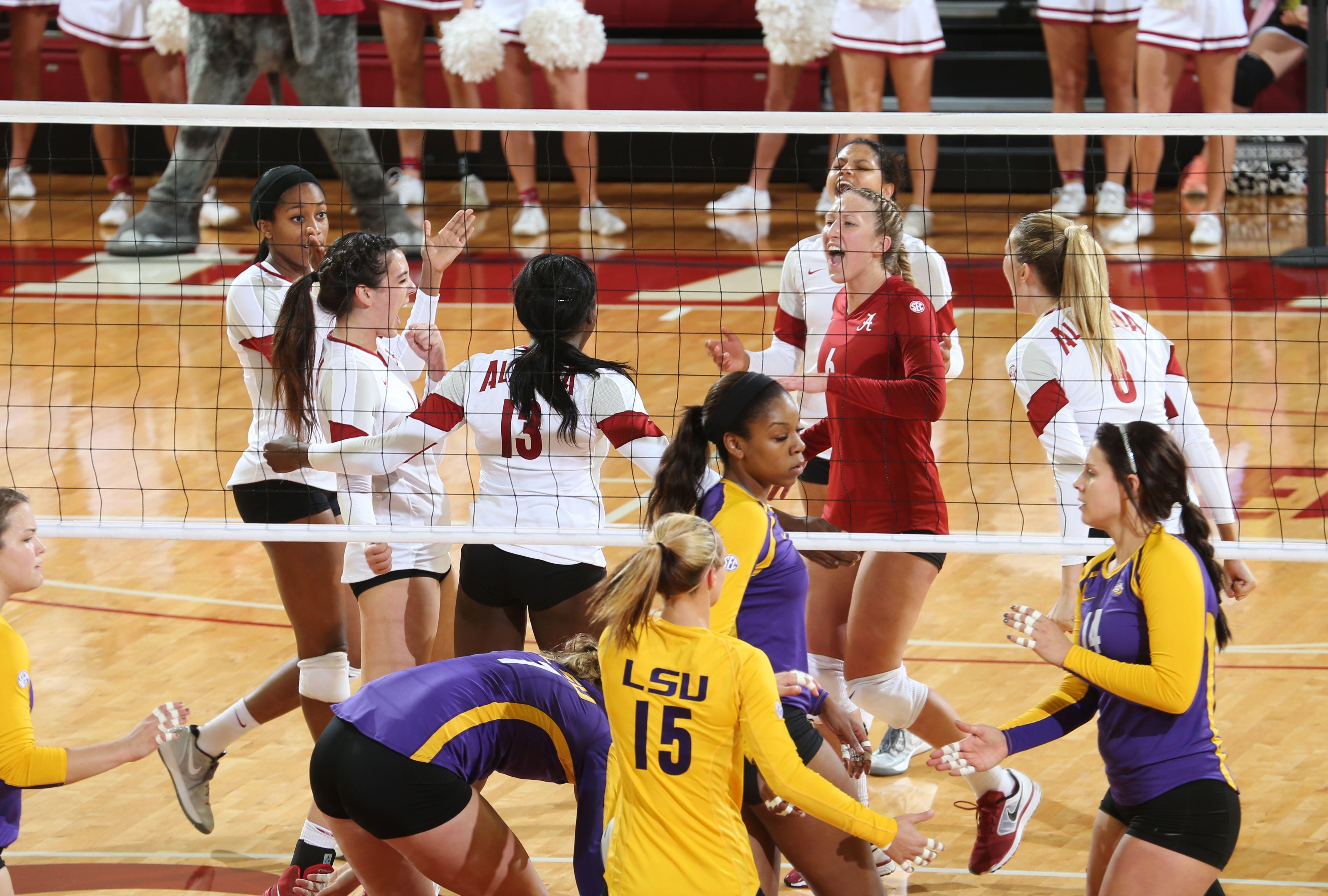 University Of Alabama Volleyball Vs Lsu Alabama Crimson Tide