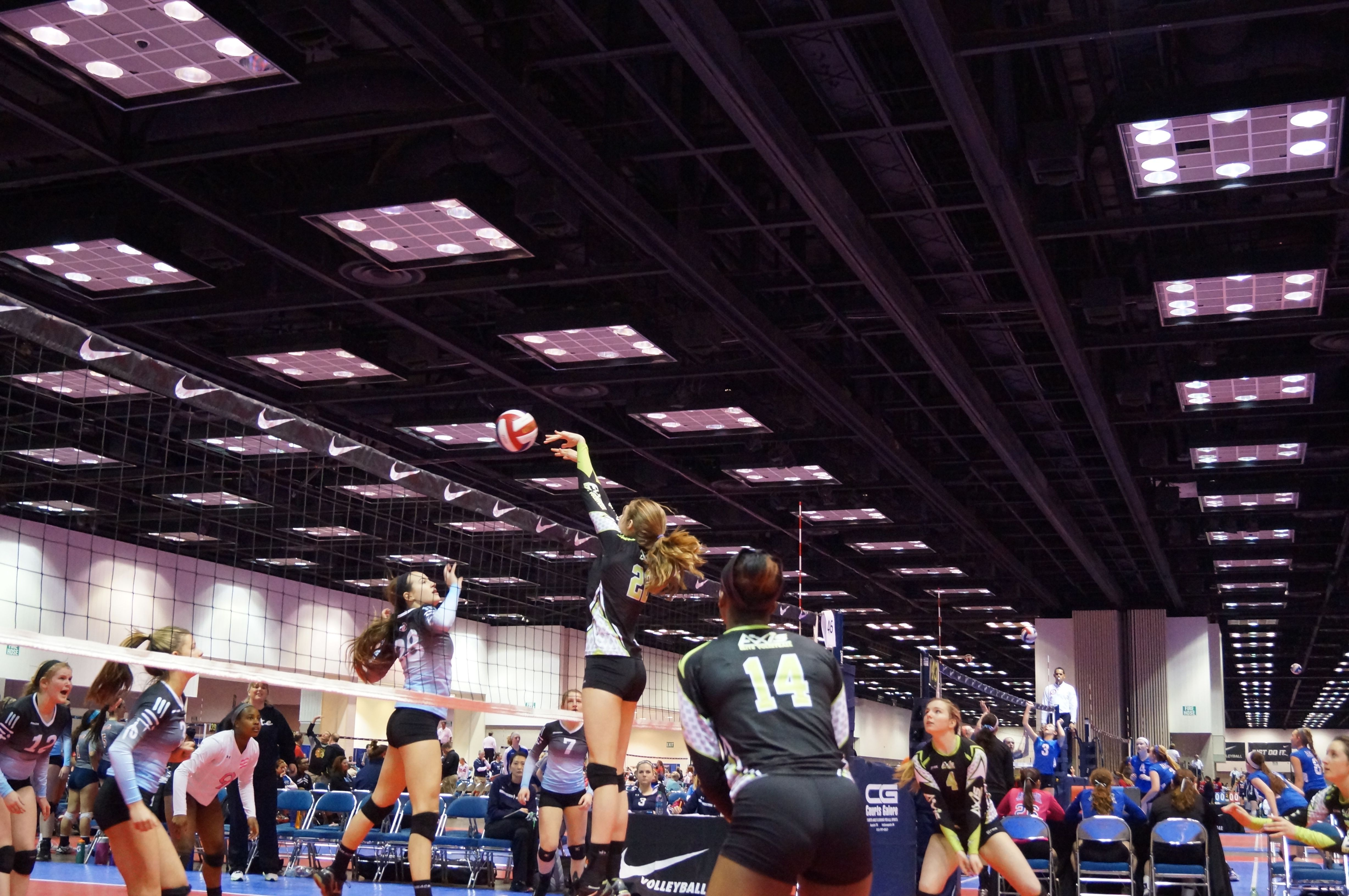 Game Day For The 15 Rox Elite Volleyball Team Volleyball Team Volleyball Elite