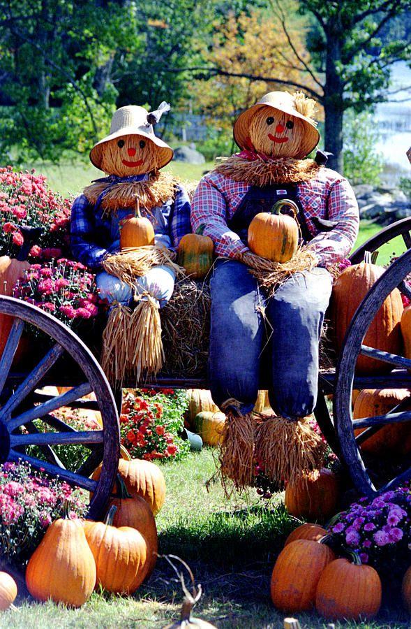 mr mrs scarecrow jardin pinterest pouvantails automne et deco citrouille. Black Bedroom Furniture Sets. Home Design Ideas