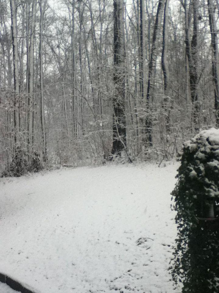 Beautiful snow <3 it!!!