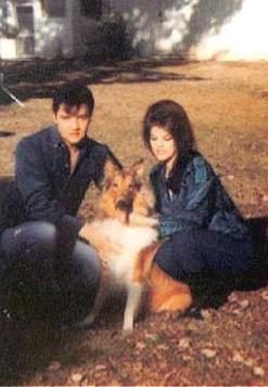 Elvis Presley With Animals 15 Photos Elvis Presley In 2020 Elvis Dog Elvis And Priscilla Priscilla Presley