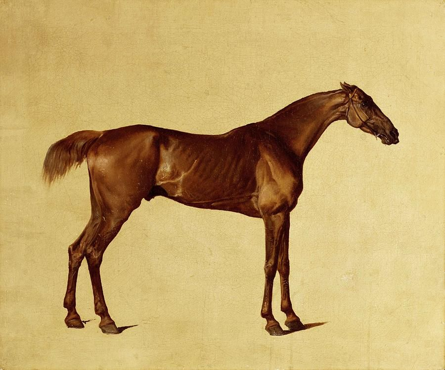 Image result for george stubbs   Equine Art   Pinterest