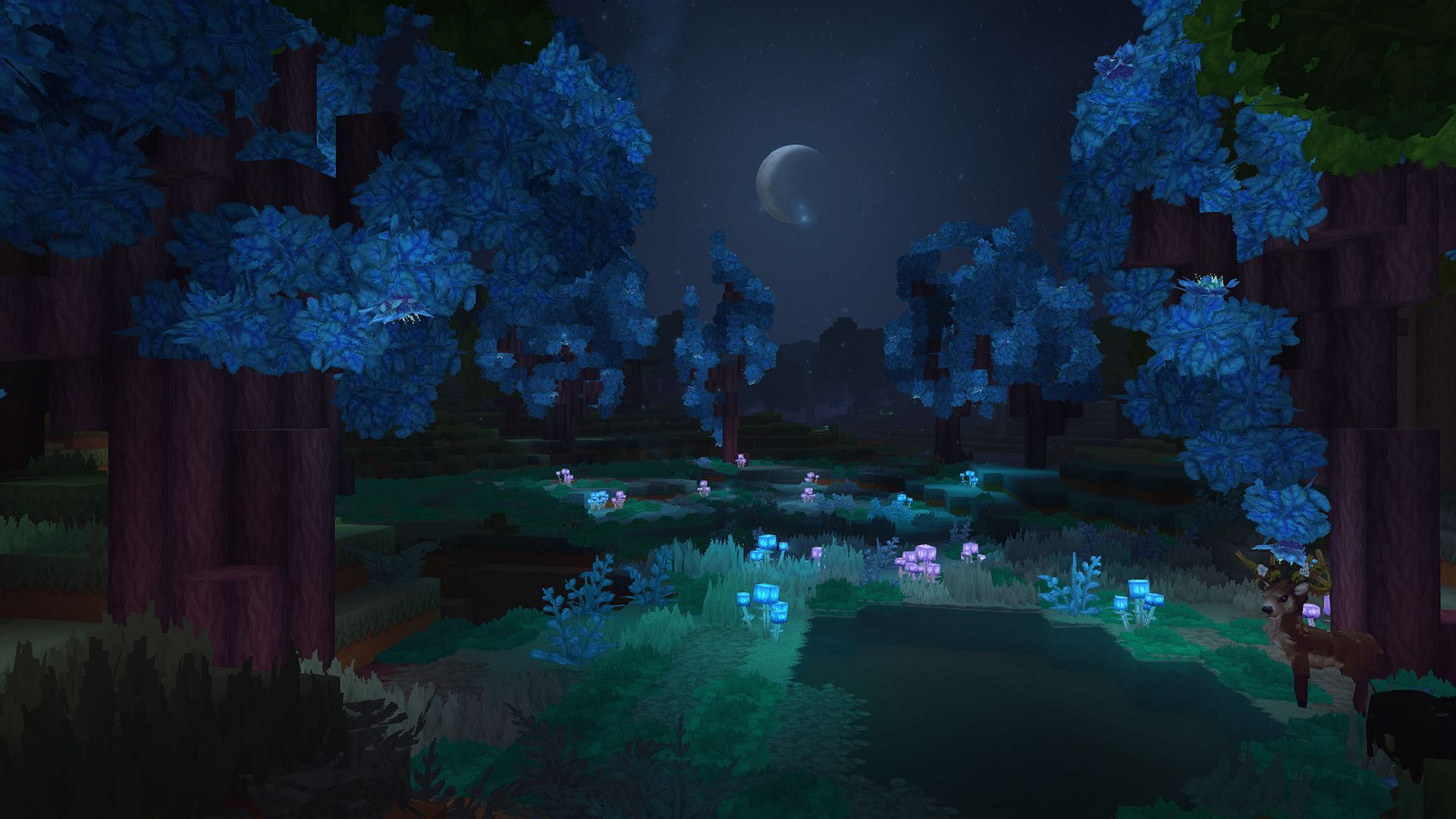 Hytale Wallpaper Night Sky Night Skies Wallpaper Media