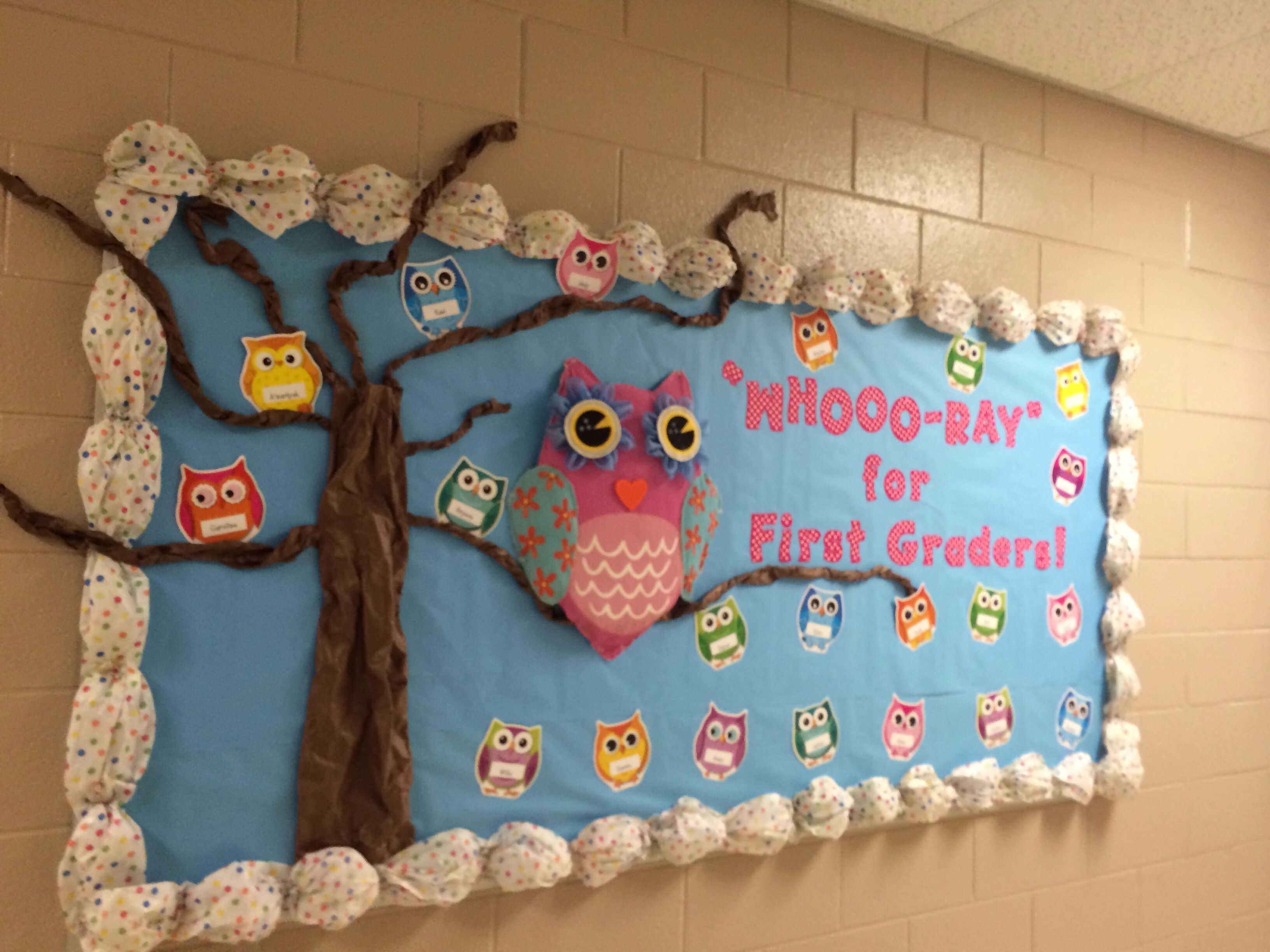 Cute Owl Classroom Decorations ~ Owl themed welcome back bulletin board teaching