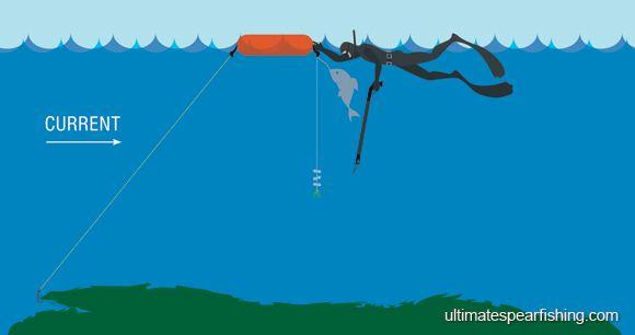 USM - Use A Reef Hook