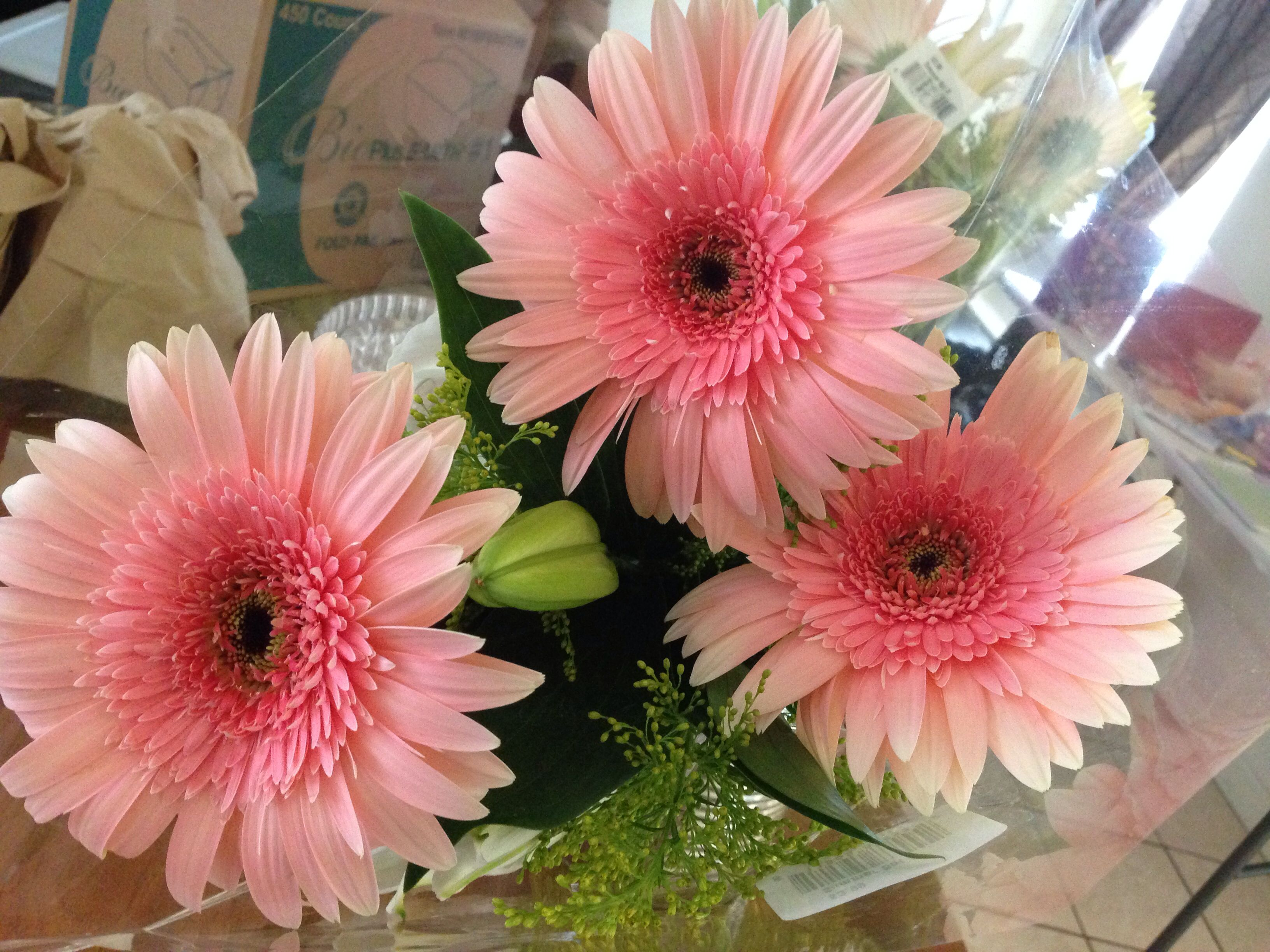 I love Gerberas~~ they are so cute and come in many different colors ...