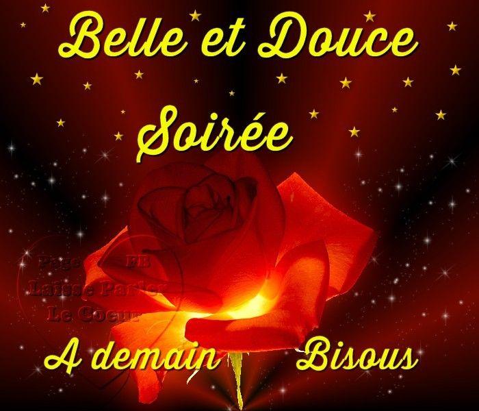 Bien-aimé Bonne soirée image #7360 - Belle et Douce Soirée, A demain, Bisous  TV03