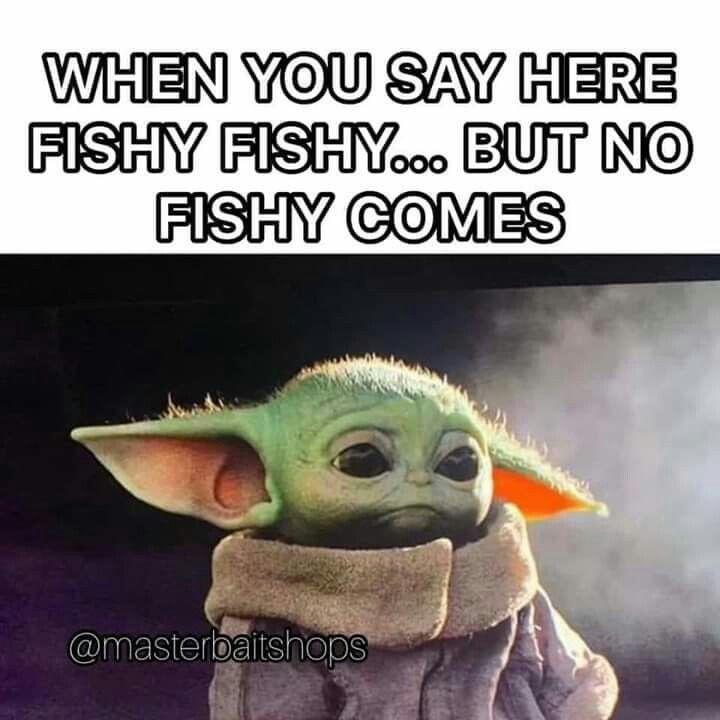 Pin By Mr Wonka S Wife On Star Wars Yoda Funny Yoda Meme Yoda