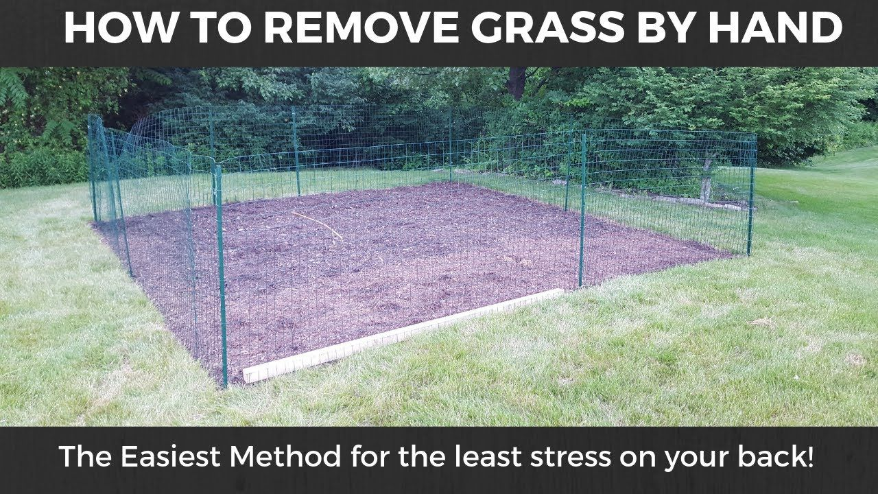 How To Remove Grass Easy Method For Digging Out And Removing Grass Sod How To Remove Grass No Grass Backyard Sod Grass