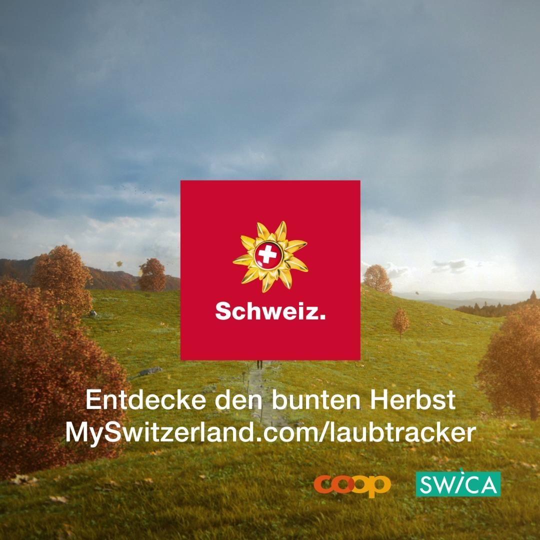 Was wäre der Herbst ohne seine farbenfrohen Wälder und Rebberge? Der erste «Laubtracker» der Schweiz zeigt mit einem Swipe, wo und wann die Blätter in ihrer buntesten Pracht leuchten. Dazu gibt's passende Ausflugstipps und spannende Infos rund um das goldene Herbstlaub. Auf ins Farbenmeer! #IneedSwitzerland