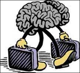Your Brain on Culture is a November article in the Monitor on Psychology. Written by Beth Azar, this piece provides good coverage of the boom in cultural n