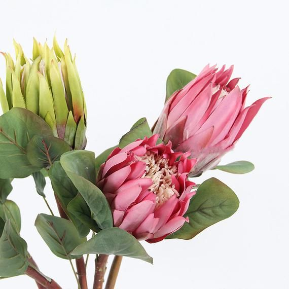 Artificial Flower Protea Cynaroides Flower Stem 26 Tall Etsy Artificial Flowers Protea Flower Faux Flower Bouquets
