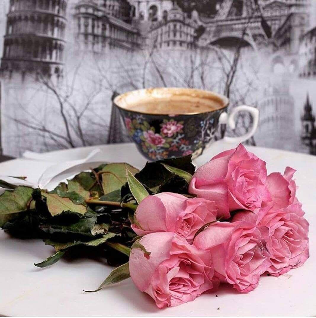 Pin by Rita Drumes on coffe Cafea, Flori, Bună dimineața