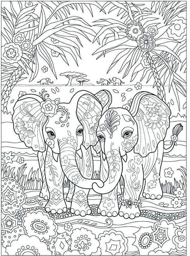 elefant malvorlagen für erwachsene zu drucken  coloring