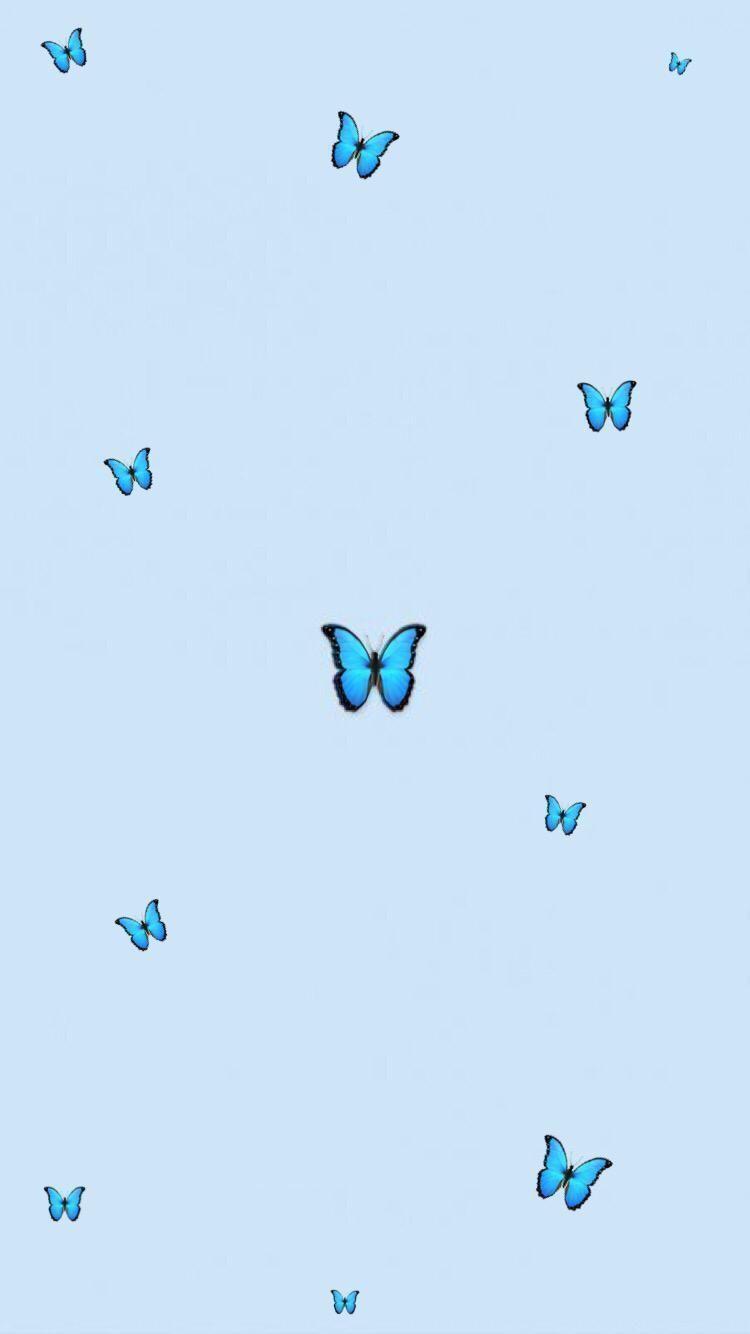 Aesthetic butterfly